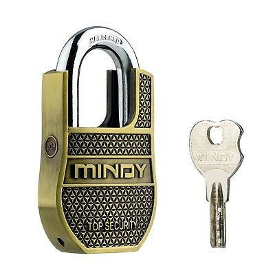 Mindy Heavy Duty Padlock with Keys Unique Style Special Chains Lock,1-Pack Hi...