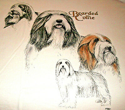 "Bearded Collie T-shirt  "" White "" 3XL ( 54 - 56 )"