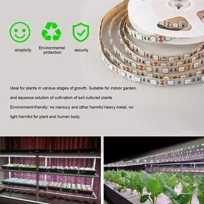 5M Full Spectrum Blue Red 5050 LED Grow Light strip Lamp For Hydroponic Plant UR