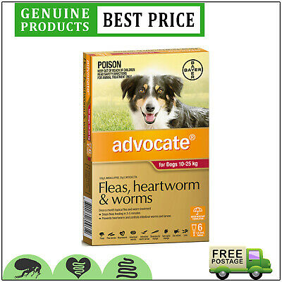 ADVOCATE RED Pack for Large Dogs 10 to 25 Kg 6 Doses Flea Heartworm Control