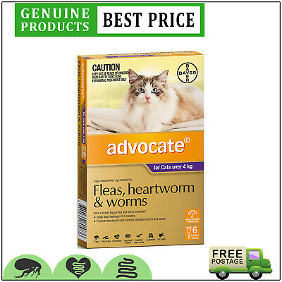 ADVOCATE Cats PURPLE Pack for Cat Over 4 Kg 6 Doses + 2 BONUS Doses