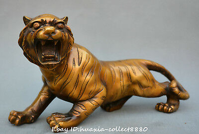 Collect China fengshui old bronze lucky Zodiac Year Tiger Tigers Animal Statue