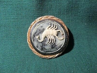 Vintage Rare Scorpion Cameo Pin Brooch Black & White