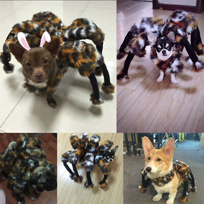 Funny Spider Party Costume Mischief Scorpion Clothing For Pet Dog Puppy