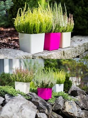 Indoor Outdoor Plastic Plant Flower Pot Garden Planter Home Decor Wedding Square