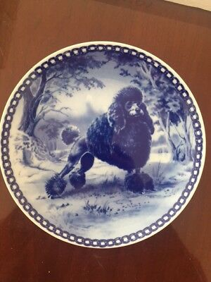 poodle (black) blue porcelain plate