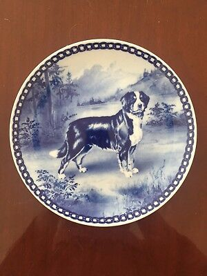 Bernese Mountain dog blue porcelain plate