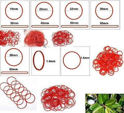 Red Natural Rubber Strong Elastic Bands 1.4mm Width Eco Quality Home Office