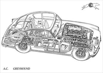 Ac Greyhound Cutaway Image A3 Size Poster Print
