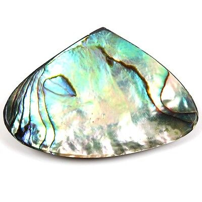 43.00 Cts Natural ABALONE SHELL 46x32 mm Fancy Jewellery Gemstone S-6066