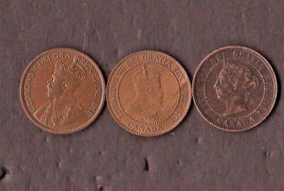 Canadian Large Cent Group Over 50 Pieces Includes 23 Victoria, 7 Edward, 1907H
