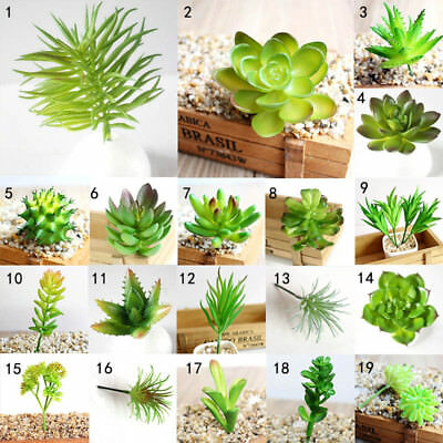 artificielle plante grasse mini succulents cactus vert bureau home jardin d cor eur 1 00. Black Bedroom Furniture Sets. Home Design Ideas