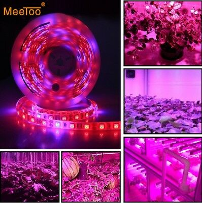 Red Blue 5:1 DC12V Hydroponic Plant LED Lamps Grow Lights SMD 5050 Strip Light