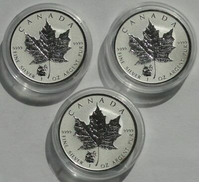 Canada 3 x 5 Dollars 1 Oz Silber Maple Leaf Privy Mark Panda 2016 Frosted Proof