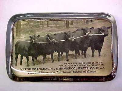 antique glass paperweight advertising Waterloo Iowa - Cattle Cows Angus