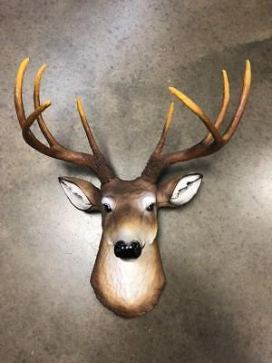 Buck Deer Head 8 Point Large Taxidermy Whitetail Mount