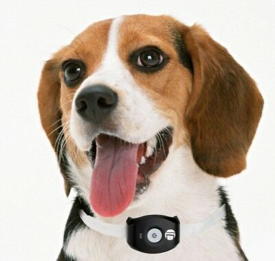 *NEW* GPS Pet Tracker Cats/Dogs
