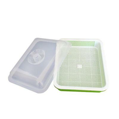 Tray with Cover Seed Sprouting for Organic Broccoli Sprouting Wheatgrass Grower