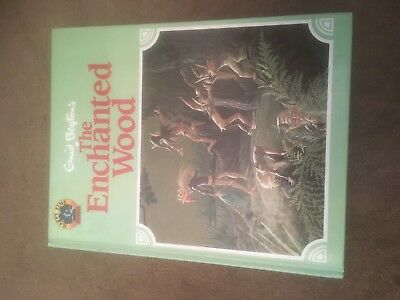 The Enchanted Wood - Happy Time Books 1993 HB - Janet & Anne Johnstone Gorgeous