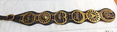 6 Horse Brasses Medallions Martingale Leather Strap Equestrian Bridle