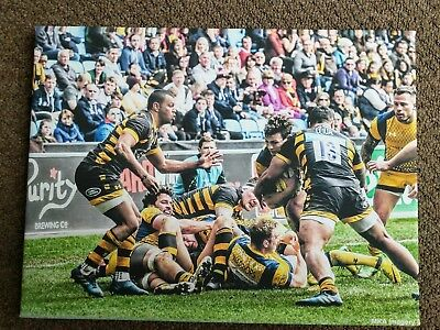 Wasps Rugby A3 Photo Canvas