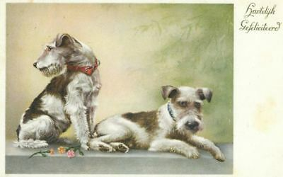 Rare Old Dog Postcard PC Jack Russell / Fox Terrier Congratulations 1939 Holland