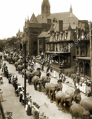 "1910 Circus Parade 12th Ave, Altoona, PA Vintage Old Photo 8.5"" x 11"" Reprint"