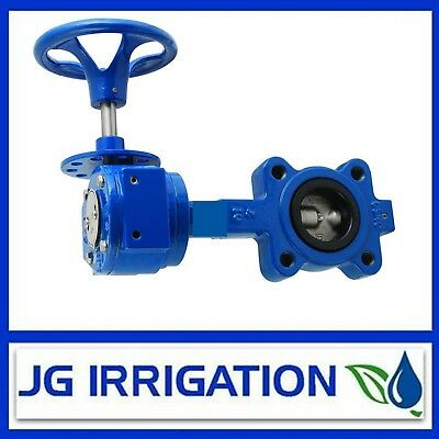 Butterfly Valve 100mm with Gear Box Table D