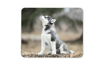 Adorable Husky Puppy Mouse Mat Pad - Dog Dogs Mum Sister Fun Gift Computer #8627