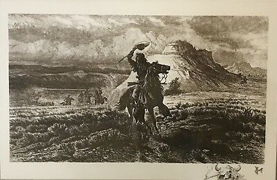 William De La Montagne Cary 1840-1922 Antique Etching Buffalo Bill Art Original