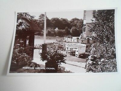 CROMER Pinewood Gardens (JS 3037) Unposted Vintage Real Photo Postcard   §A2514