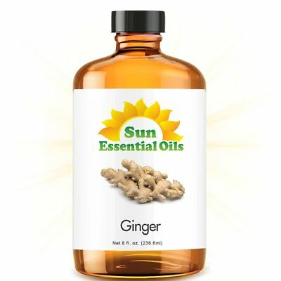 Ginger Essential Oil (Huge 8oz) 100% Pure Amber Bottle + Dropper