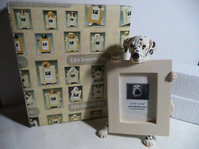 """Dalmatian Dog Photo Frame By E & S Imports 7"""" Tall New In The Box"""