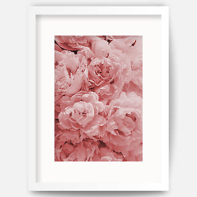 Pink PEONIES bouquet Wall Art Print Poster Botanical Flowers Decor Picture