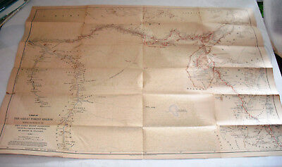 Antique 1890's Map of THE GREAT FOREST OF EMIN PASHA RELIEF of CENTRAL AFRICA