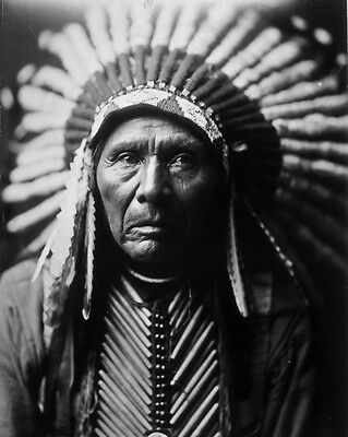 New 8x10 Native American Photo: Chief Three Horses, Unknown Indian Tribe - 1905