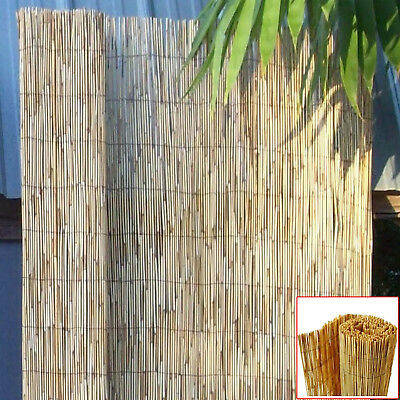 Natural Peeled Reed Fence Panel Screening Roll Garden Fencing Screen Wind Break