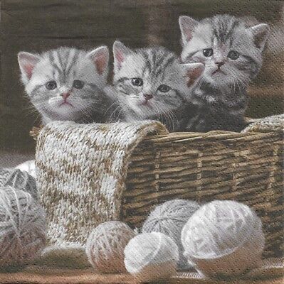 Lot de 4 Serviettes en papier Chatons Chats  pour Decoupage Collage Decopatch