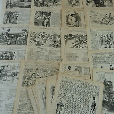 SELECTION of 50 ANTIQUE PUNCH CARTOON PAGES late 19th century, art/craft project