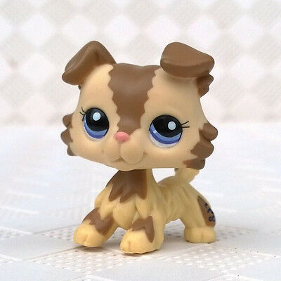 Littlest Pet Shop LPS Toys Collie Dog Puppy With Blue Eyes Cream Tan Brown #2210