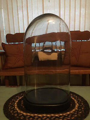 """large"" Antique Victorian French Oval Glass Display Dome With Wood Base 20"" Tall"