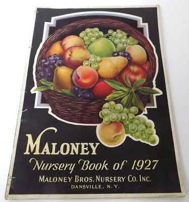 1927 Maloney Brothers Nursery Catalog Dansville, NY Fruit Trees, Berries, Roses