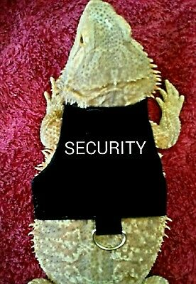 Lil' Bestie Bearded Dragon reptile Harness and Leash SECURITY