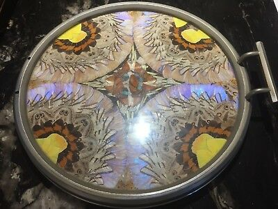 VINTAGE IRIDESCENT BUTTERFLY WING  Handle Round Chrome TRAY ~ Rio DeJaneiro
