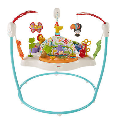Fisher-Price Animal Activity Jumperoo Baby Gear