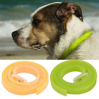 Dog Cat Repel Tick Flea Quick Kill Remover Pet Protection Aroma Neck Collar AG