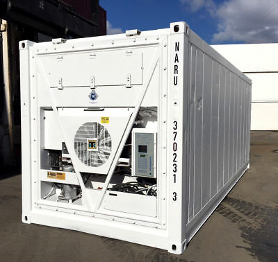 20 Feet Freezer Container Compact Mobile Cold Storage Cell Thermo King / Reefer