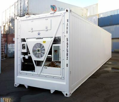 40 Feet Freezer Container Compact Mobile Cold Storage Cell Thermo King / Reefer