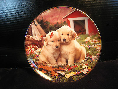 """New! Mib! Franklin Mint Royal Doulton Ltd Ed Collector Plate """"fall In Love"""""""