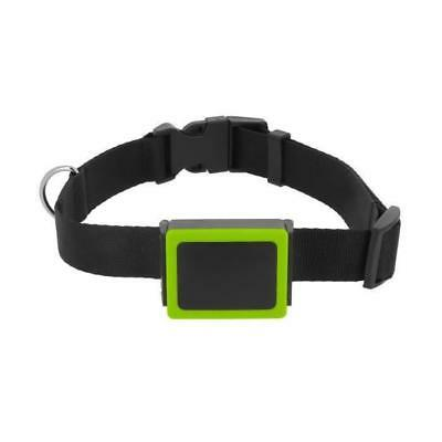 Weenect Pets - Balise GPS pour Chien - Neuf